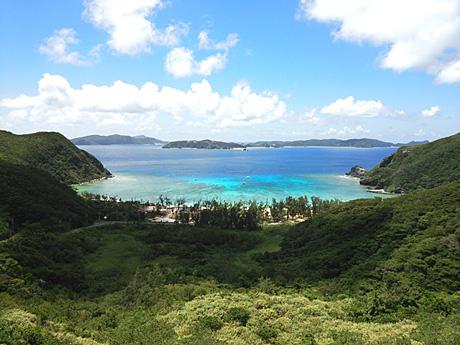 山の上から見る海の景色も最高!
