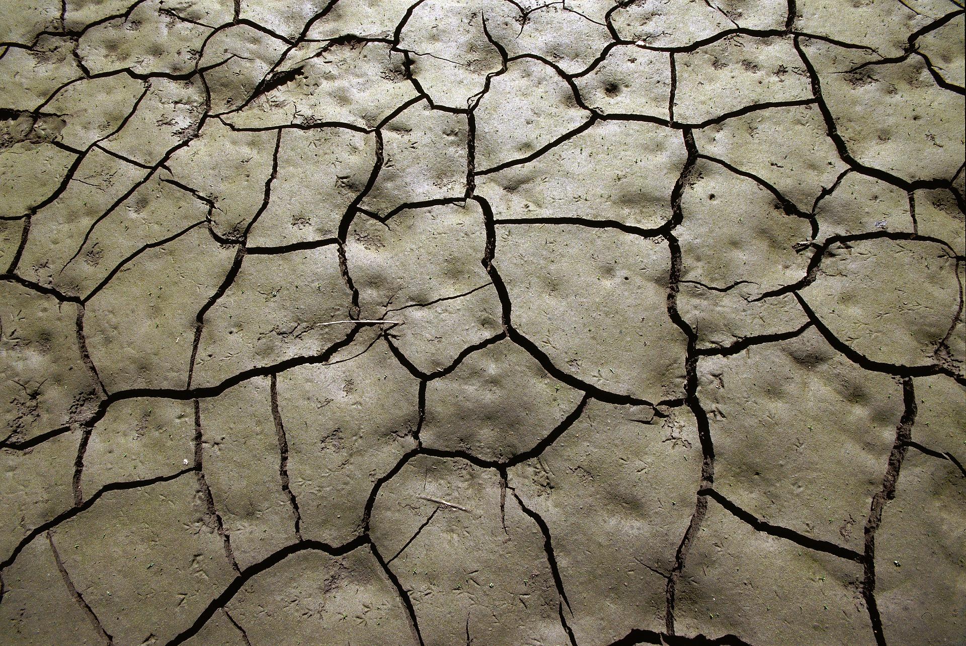 mud-2174607_1920